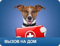 Вызвать ветврача / Скорая ветеринарная помощь